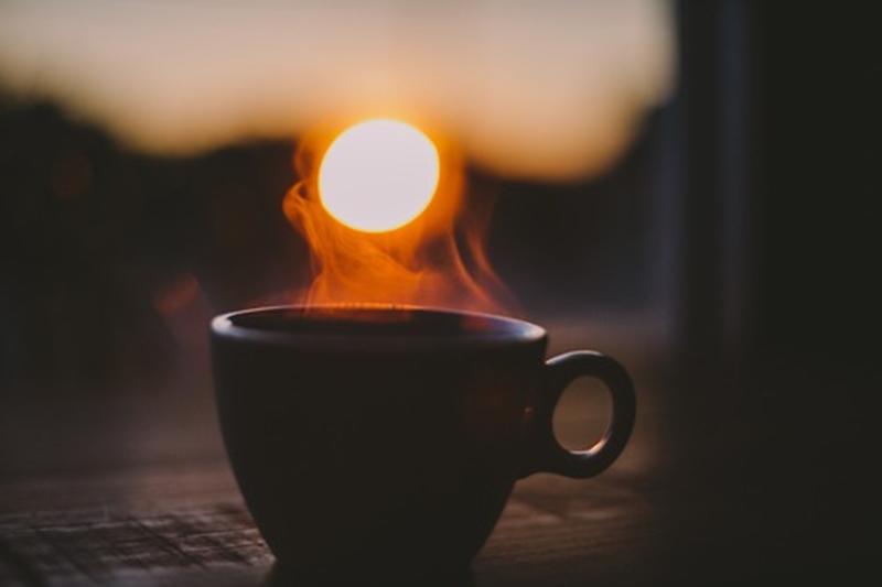 sun cup copy