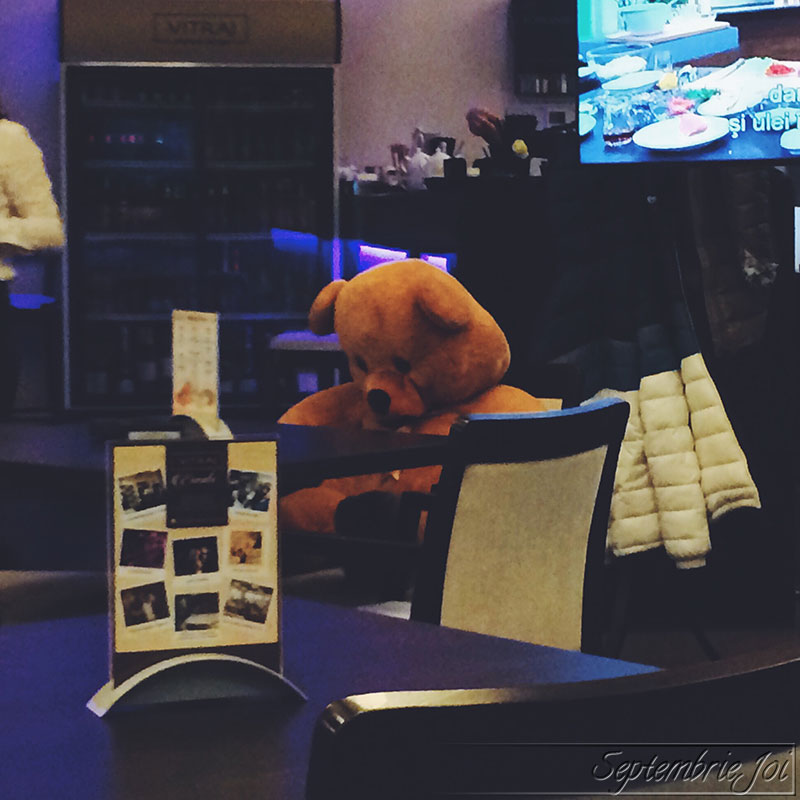 ursulet-de-plus-singur