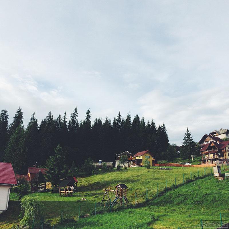 casa-floarea-borsec