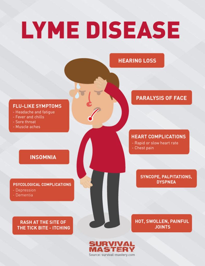 boala-lyme-simptome
