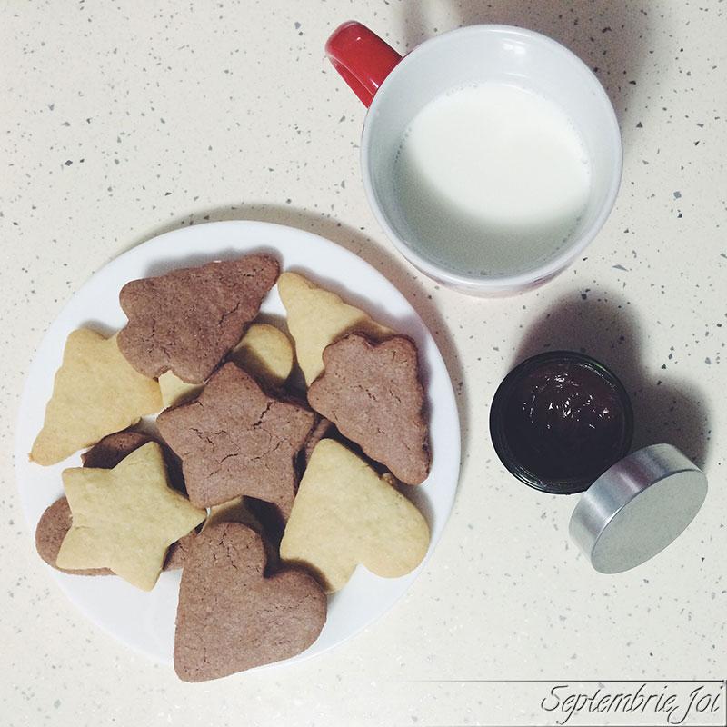 biscuiti-de-casa-cu-lapte