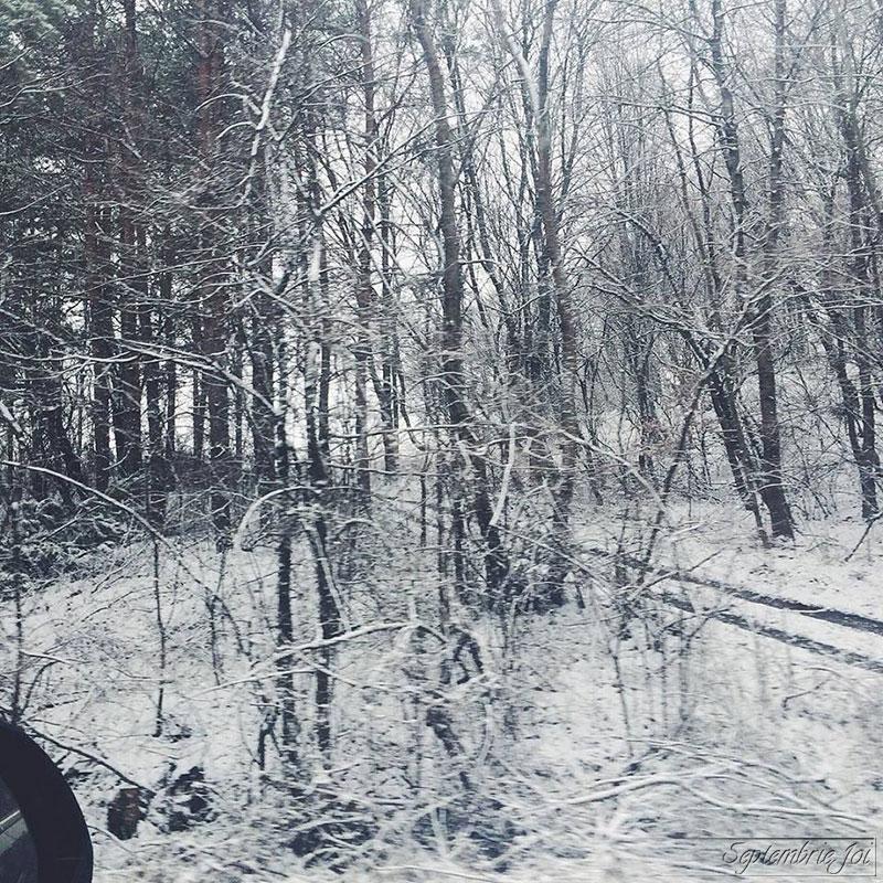 ninsoare-in-martie
