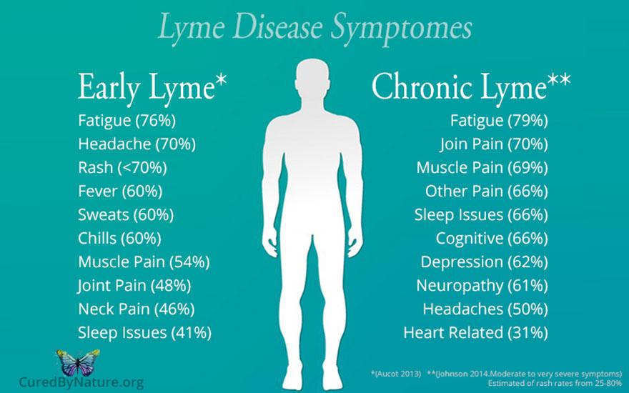 boala-lyme-cronica-simptome