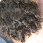 Îngrijire pentru copii cu păr creț – ce-am păstrat și ce am schimbat